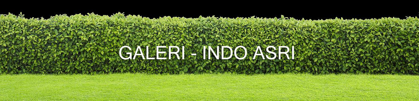 GALERI - INDO ASRI(1)