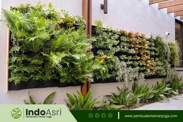 Sebagai tukang taman, Indo asri  juga melayani jasa pembuatan Taman Vertikal