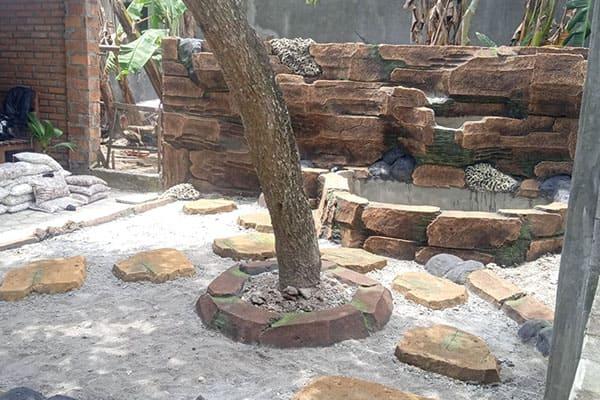 pembuatan taman jogja-taman rumah (19)