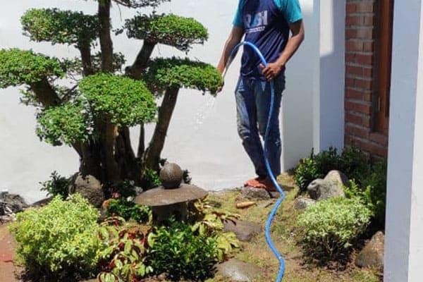 pembuatan taman jogja-taman rumah (21)