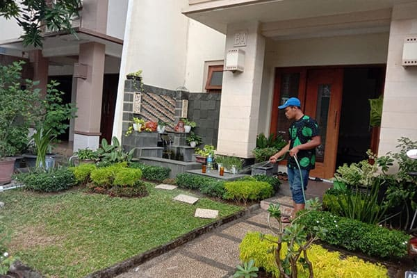 pembuatan taman jogja-taman rumah (6)